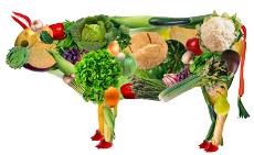 veggie-cow-large